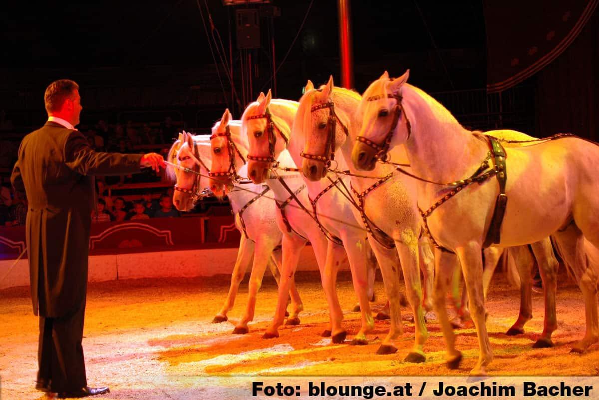 circus-louis-knie-graz-2014-233