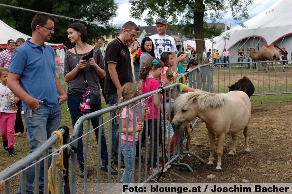 circus-louis-knie-graz-2014-293