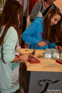 sbim-schule-berufs-informationsmesse-graz-2014-026